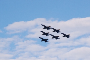 The Blue Angels are the Navy's precision demonstration team. They perform before an estimated 11 million people every year.